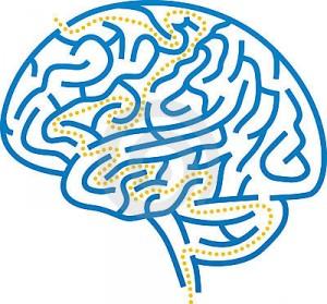 Entrenamiento Cerebral Bayton