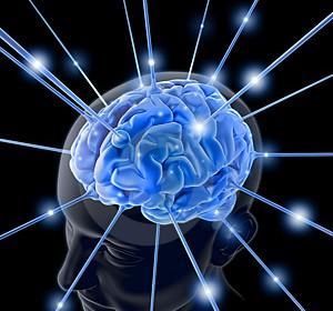 ¿QUÉ SABEMOS SOBRE LOS NEUROTRANSMISORES? APRENDE A CONTROLARLOS Artículo publicado por Cristina Coca